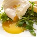 Schorseneren en rucola salade met gepocheerd ei